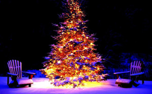 christmas-christmas-tree-lights-chairs-white-snow-night