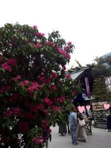 20190414東京大神宮